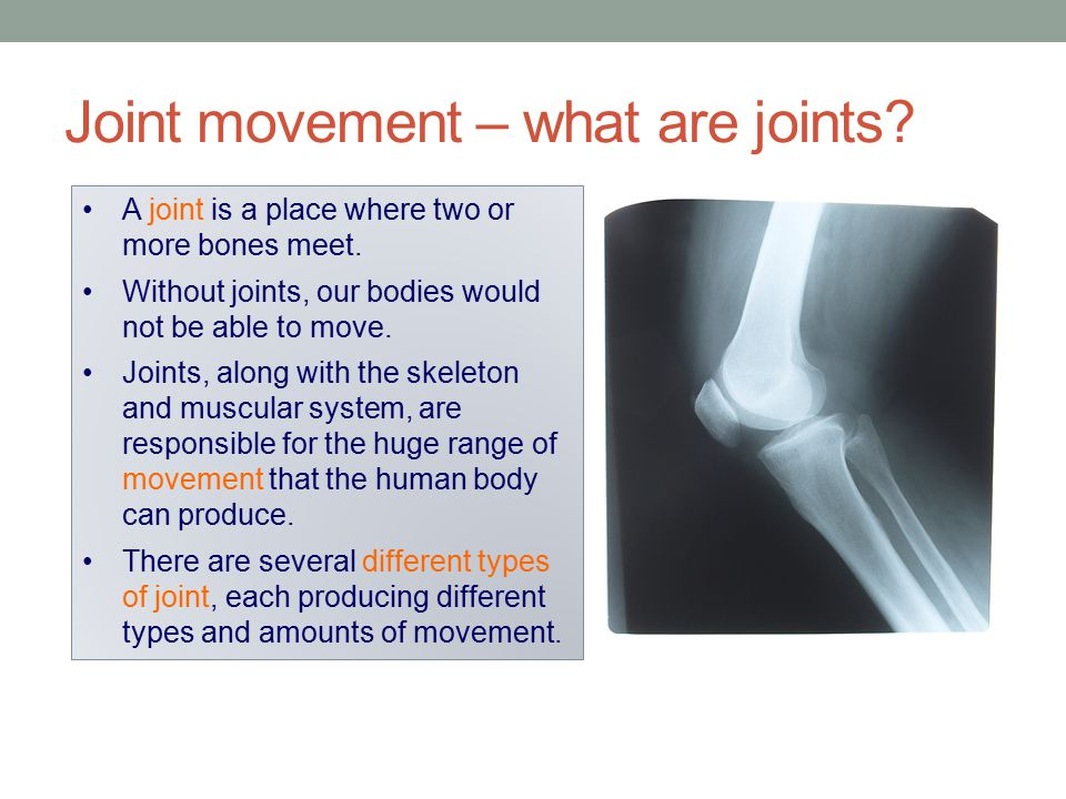 Joint movement – what are joints