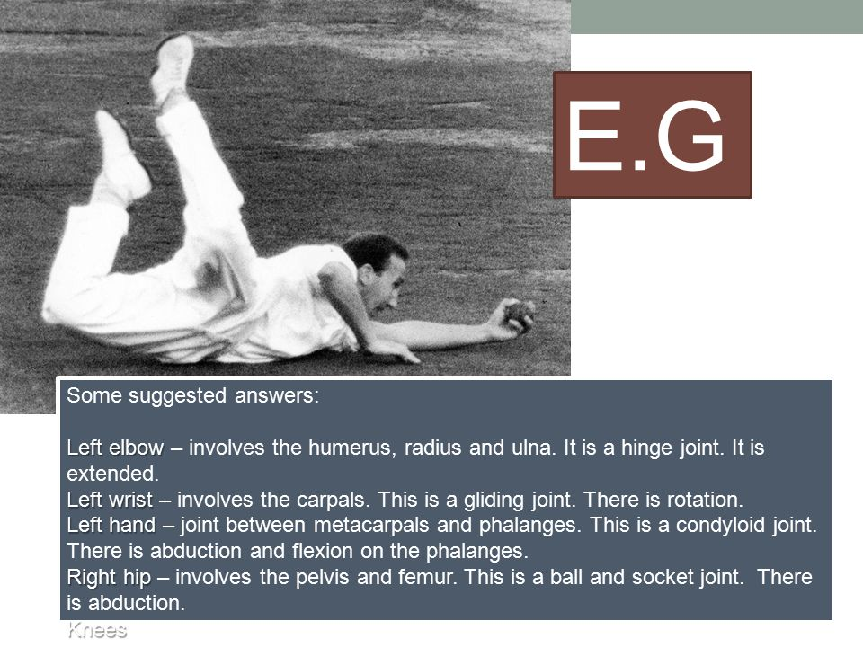 E.G. Some suggested answers: