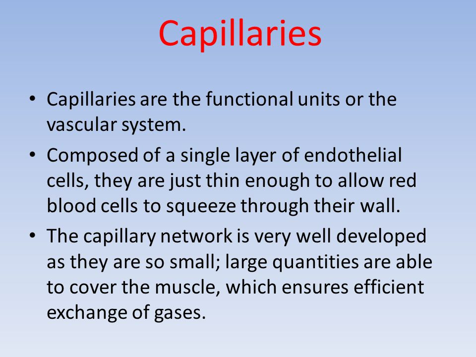 Capillaries Capillaries are the functional units or the vascular system.