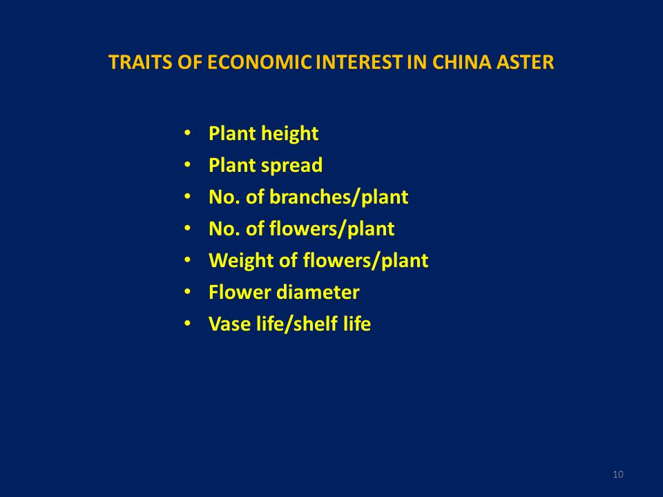 TRAITS OF ECONOMIC INTEREST IN CHINA ASTER