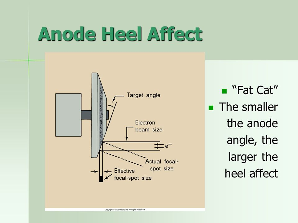 Anode Heel Affect Fat Cat The smaller the anode angle, the