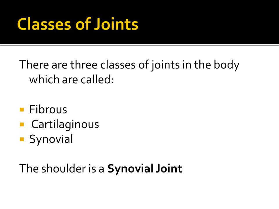 Classes of Joints There are three classes of joints in the body which are called: Fibrous. Cartilaginous.