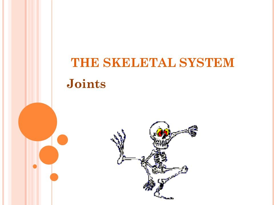 THE SKELETAL SYSTEM Joints