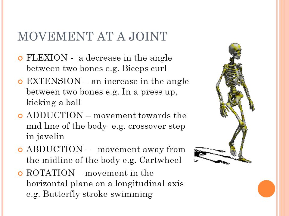 MOVEMENT AT A JOINT FLEXION - a decrease in the angle between two bones e.g. Biceps curl.