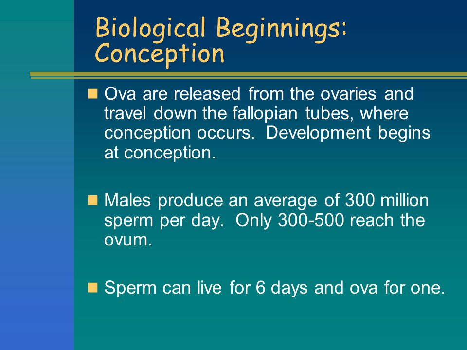 Biological Beginnings: Conception