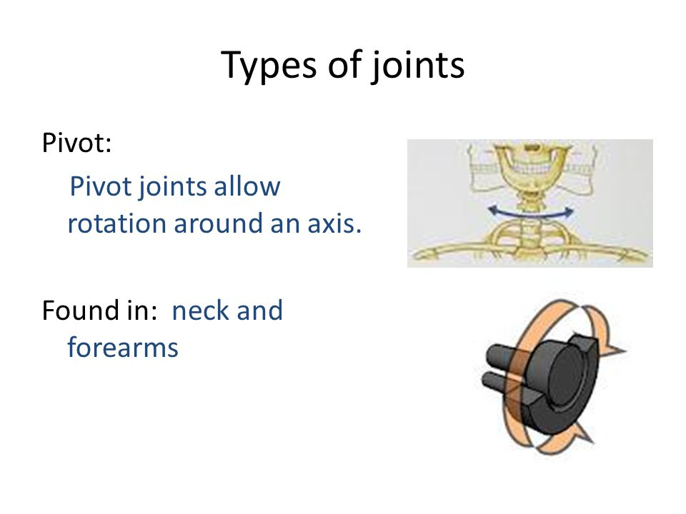 Types of joints Pivot: Pivot joints allow rotation around an axis. Found in: neck and forearms