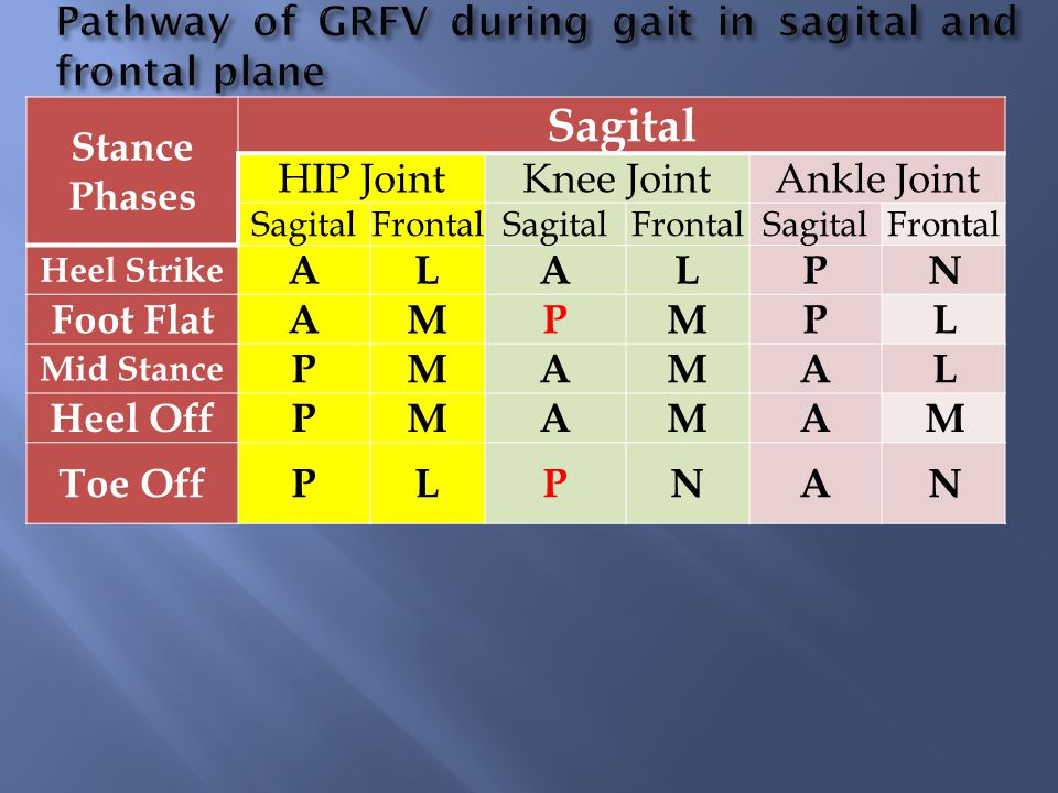 Pathway of GRFV during gait in sagital and frontal plane