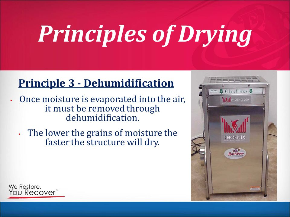 Principles of Drying Principle 3 - Dehumidification