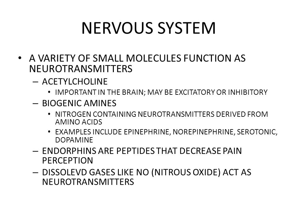 NERVOUS SYSTEM A VARIETY OF SMALL MOLECULES FUNCTION AS NEUROTRANSMITTERS. ACETYLCHOLINE. IMPORTANT IN THE BRAIN; MAY BE EXCITATORY OR INHIBITORY.