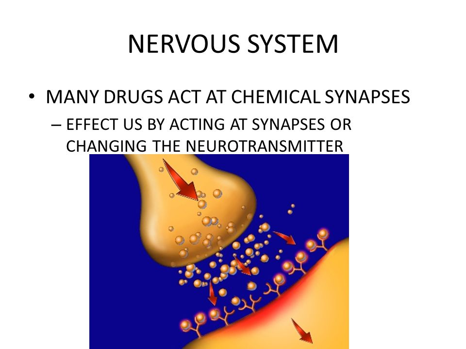 NERVOUS SYSTEM MANY DRUGS ACT AT CHEMICAL SYNAPSES