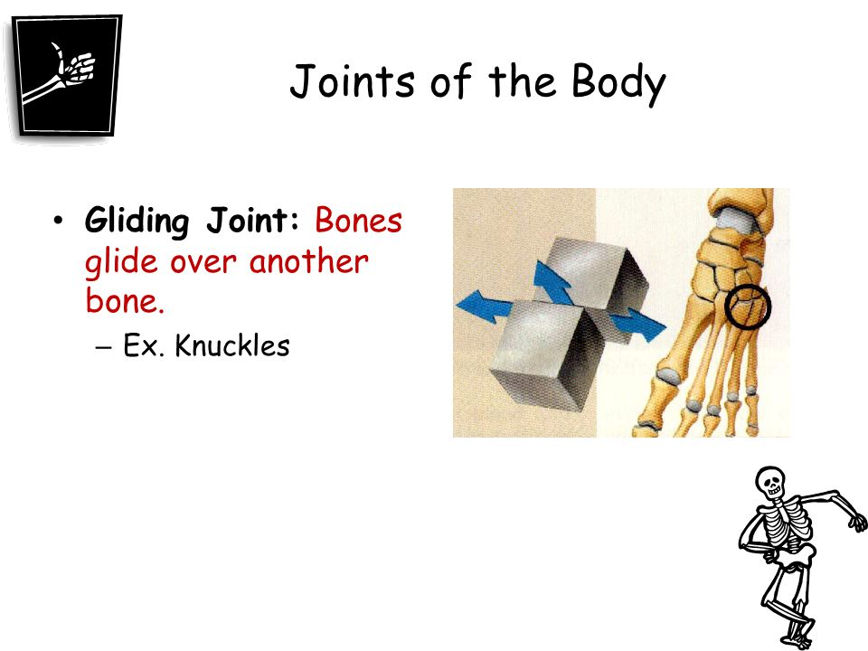 Joints of the Body Gliding Joint: Bones glide over another bone.