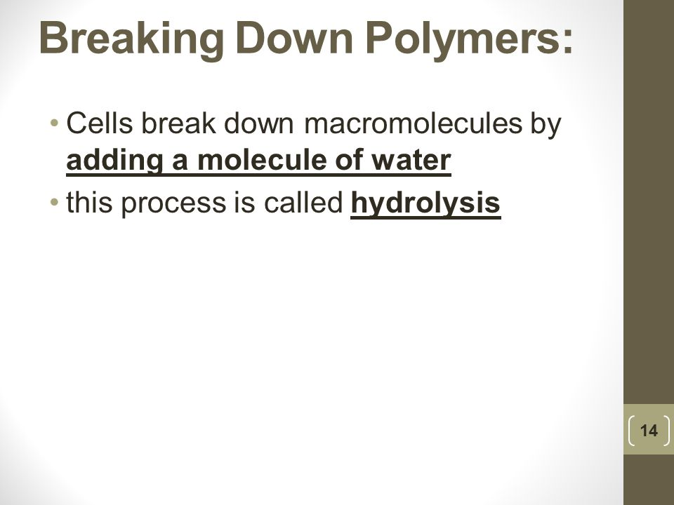 Breaking Down Polymers: