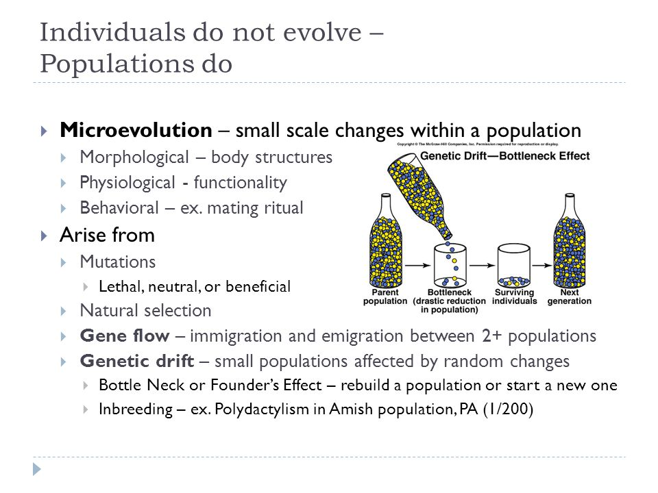 Individuals do not evolve – Populations do