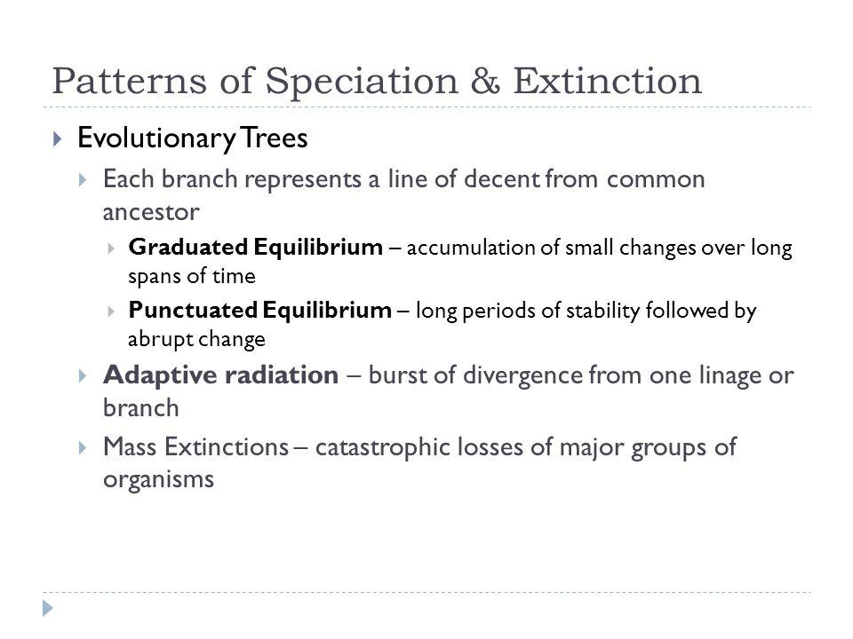 Patterns of Speciation & Extinction