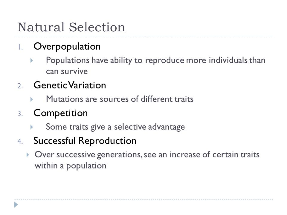 Natural Selection Overpopulation Genetic Variation Competition