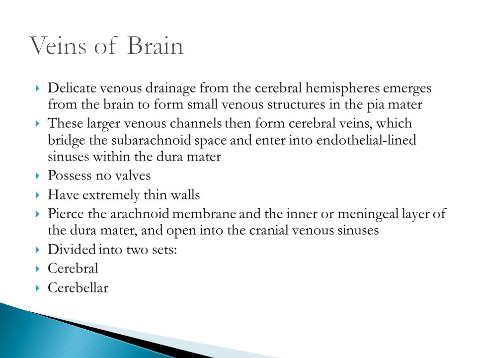 Veins of Brain Delicate venous drainage from the cerebral hemispheres emerges from the brain to form small venous structures in the pia mater.