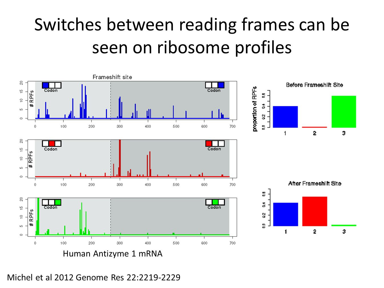 Switches between reading frames can be seen on ribosome profiles