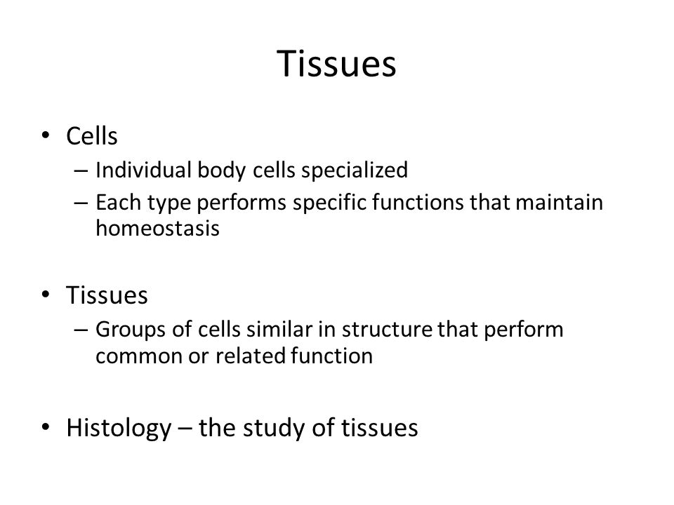 Tissues Cells Tissues Histology – the study of tissues