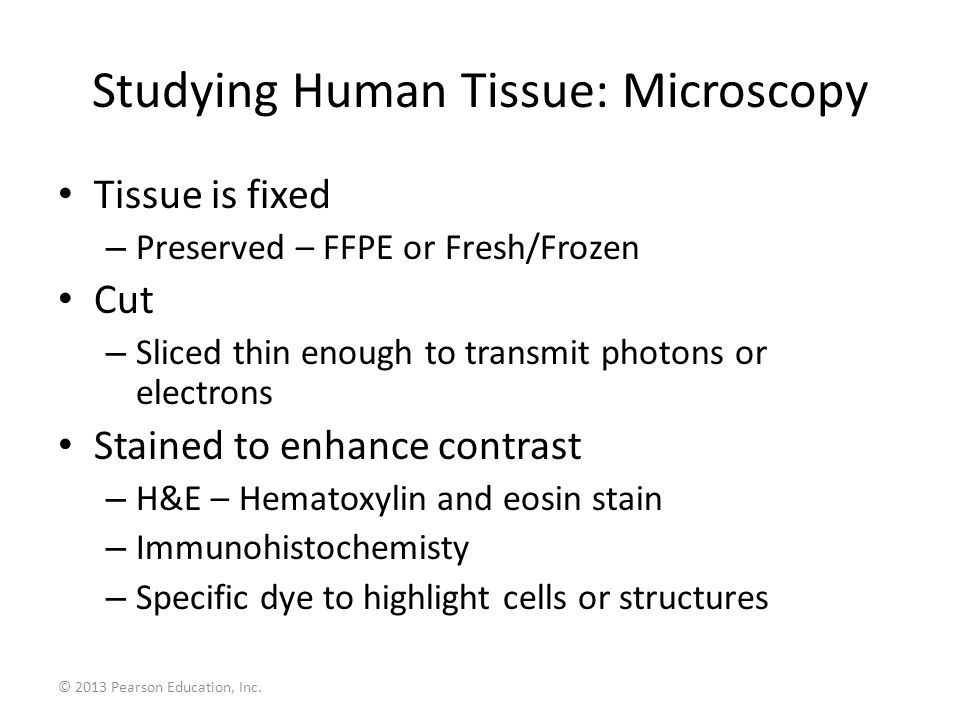 Studying Human Tissue: Microscopy