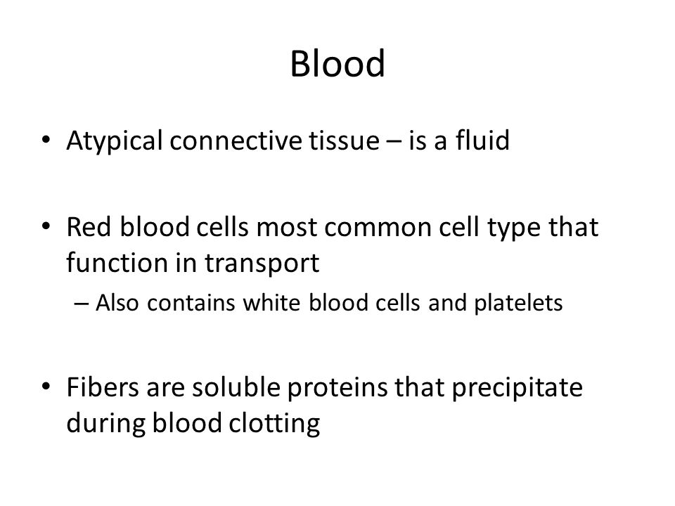 Blood Atypical connective tissue – is a fluid