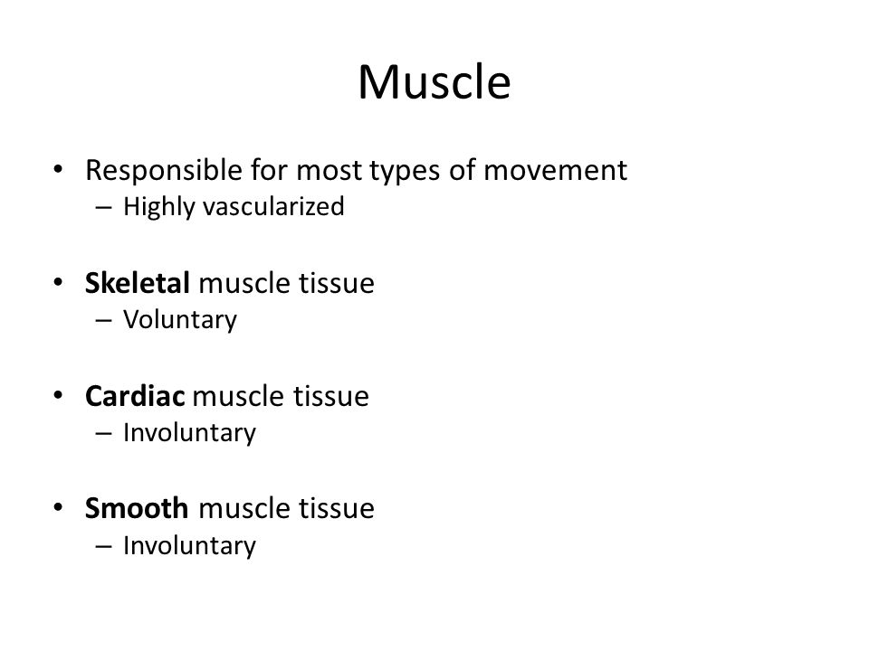 Muscle Responsible for most types of movement Skeletal muscle tissue