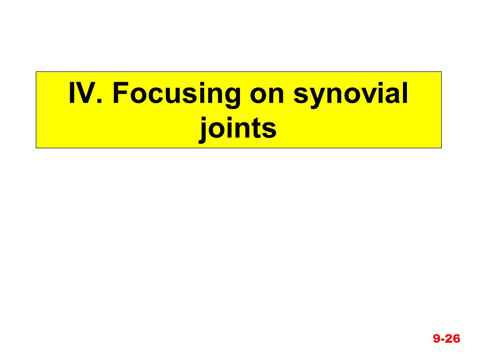 IV. Focusing on synovial joints