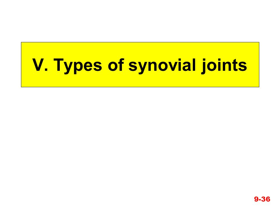V. Types of synovial joints