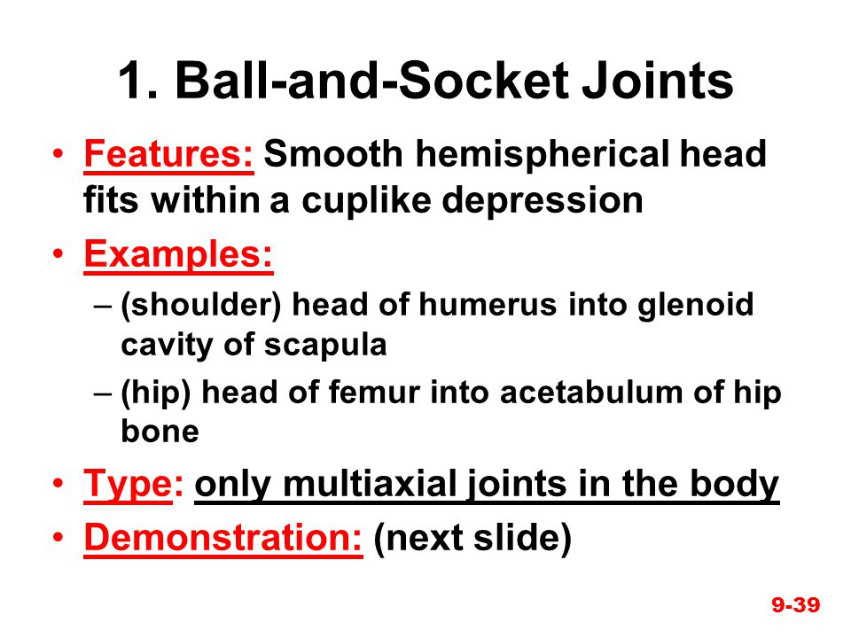 1. Ball-and-Socket Joints