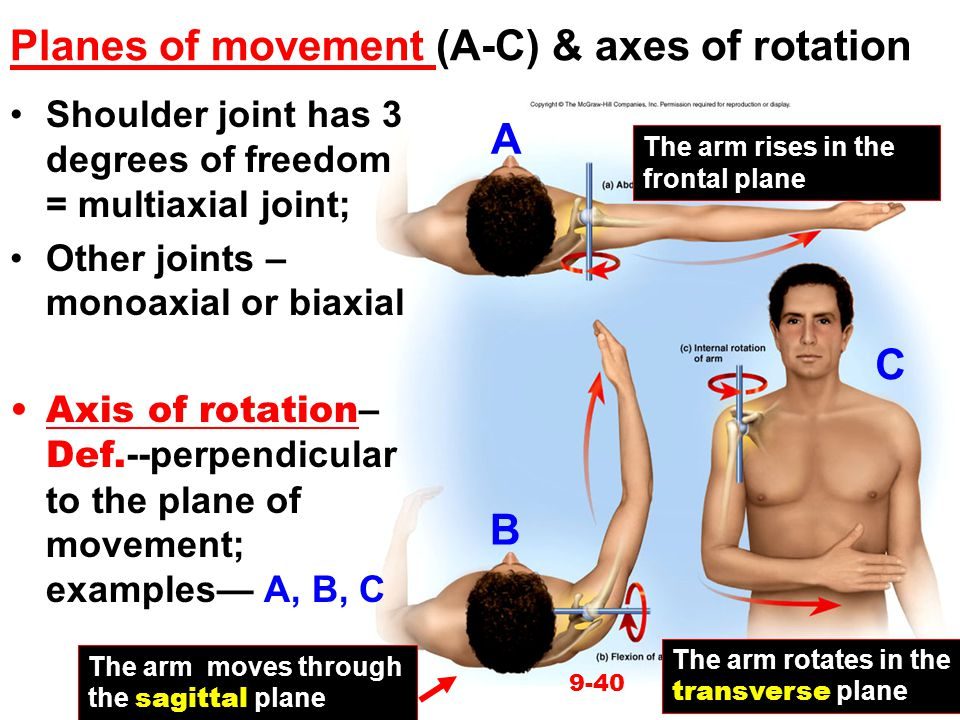 Planes of movement (A-C) & axes of rotation