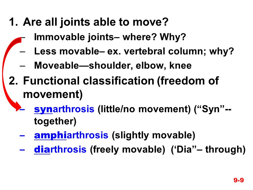 Are all joints able to move