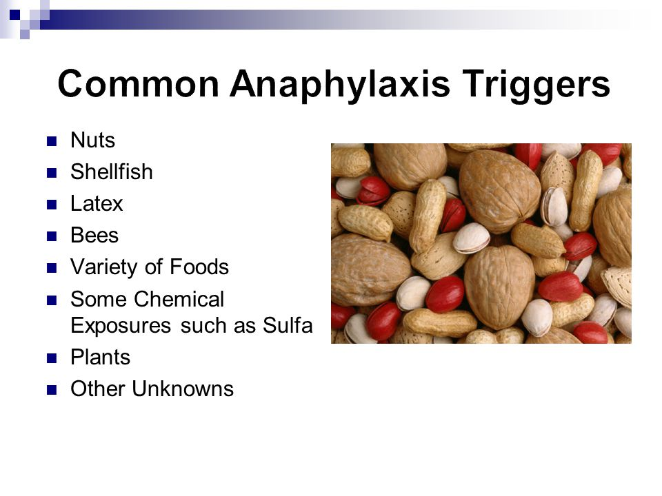 Common Anaphylaxis Triggers