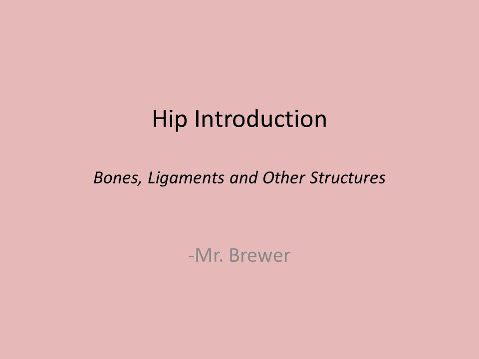 Hip Introduction Bones, Ligaments and Other Structures