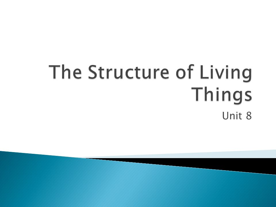The Structure of Living Things