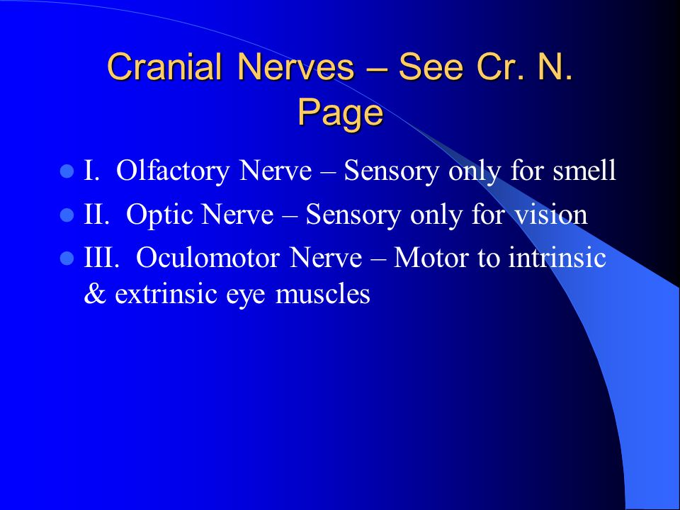 Cranial Nerves – See Cr. N. Page