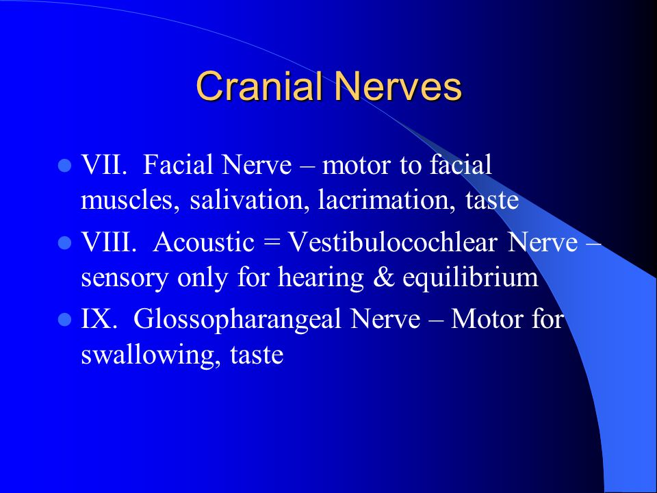 Cranial Nerves VII. Facial Nerve – motor to facial muscles, salivation, lacrimation, taste.