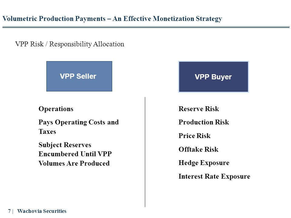 VPP Risk / Responsibility Allocation