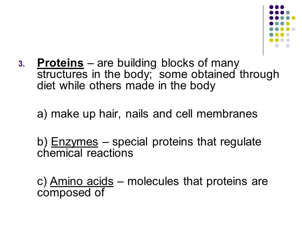 Proteins – are building blocks of many structures in the body; some obtained through diet while others made in the body