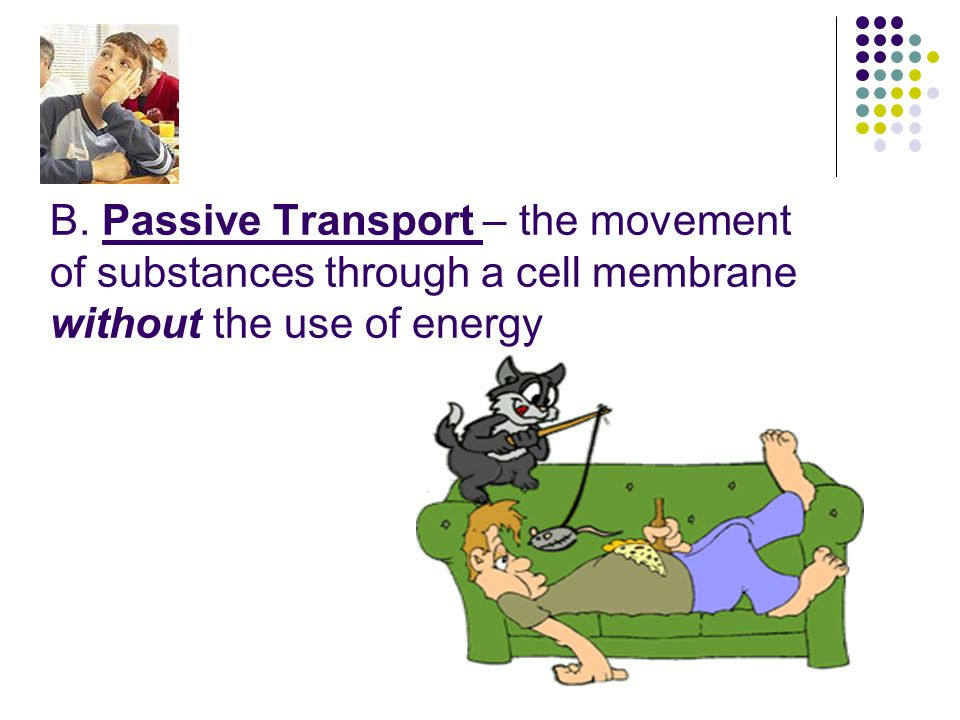 B. Passive Transport – the movement of substances through a cell membrane without the use of energy