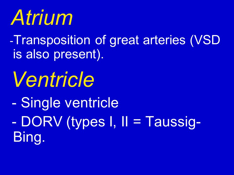 Atrium Ventricle - Single ventricle
