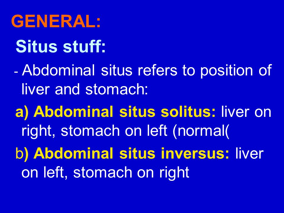 GENERAL: Situs stuff: - Abdominal situs refers to position of liver and stomach: