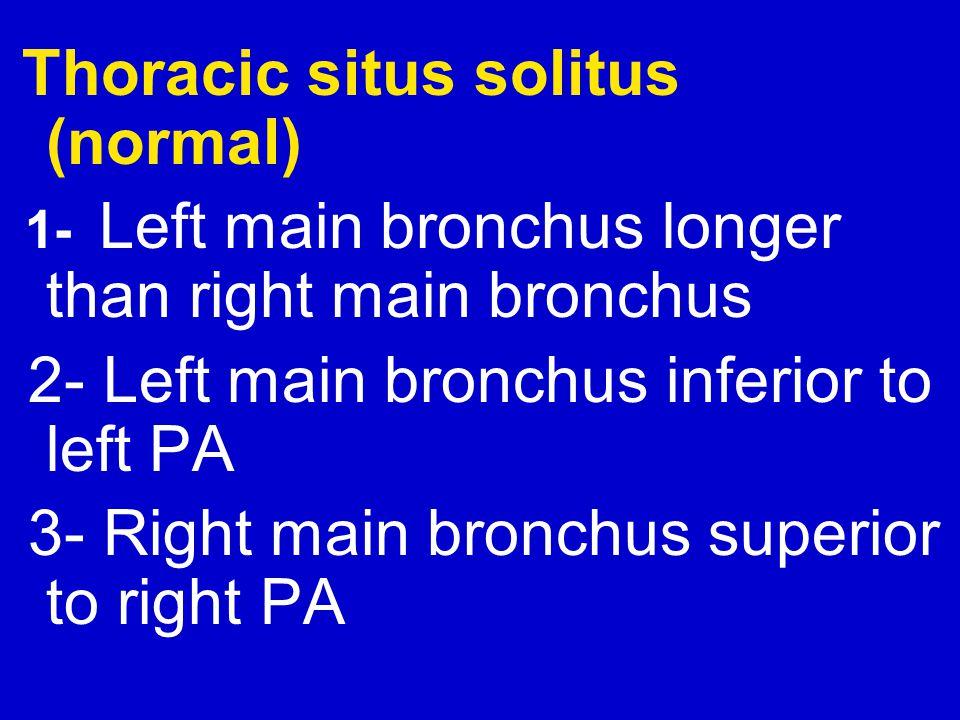 2- Left main bronchus inferior to left PA