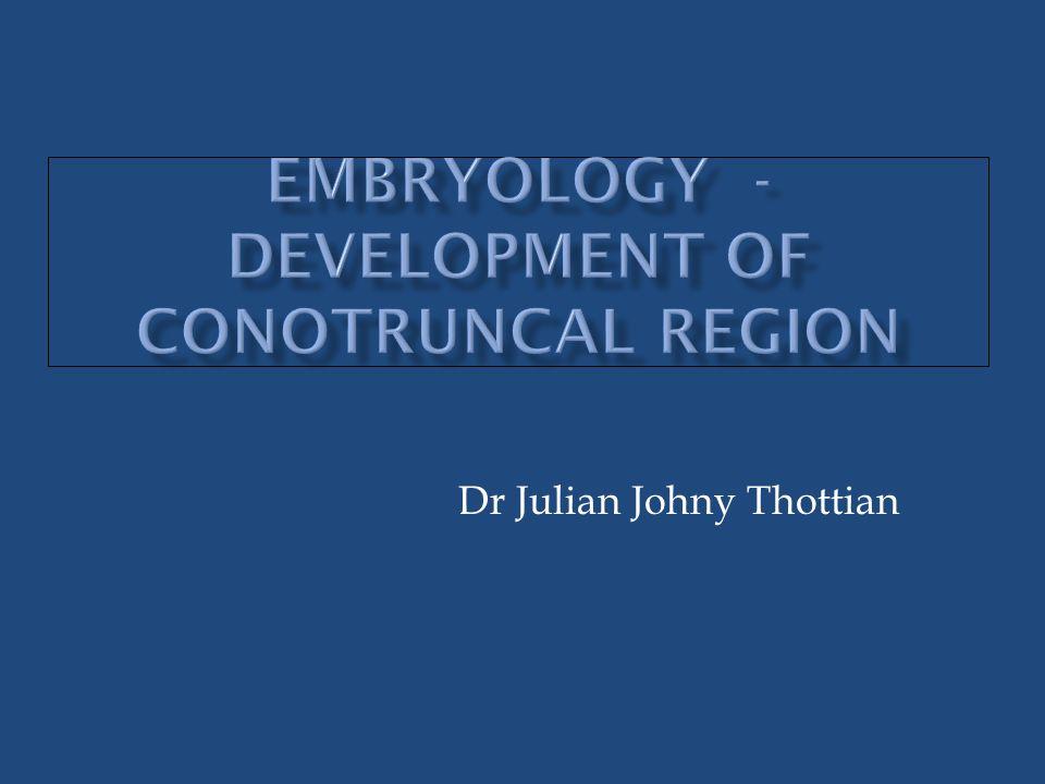 Embryology - development of Conotruncal region