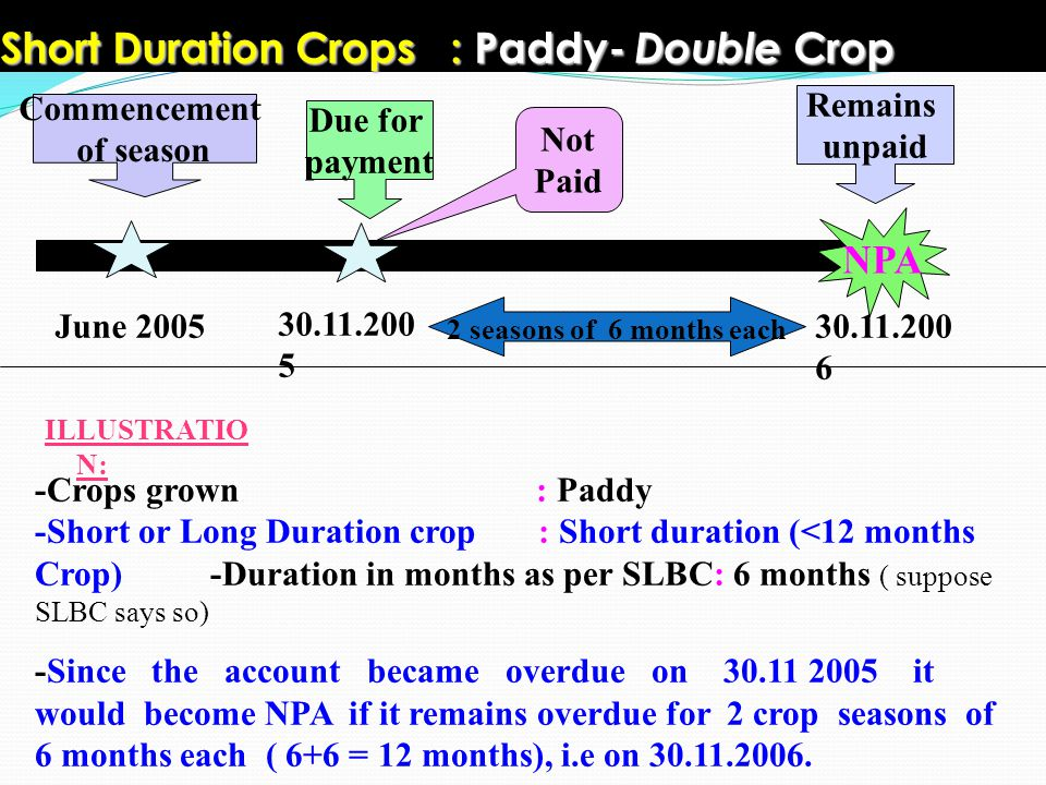 Short Duration Crops : Paddy- Double Crop