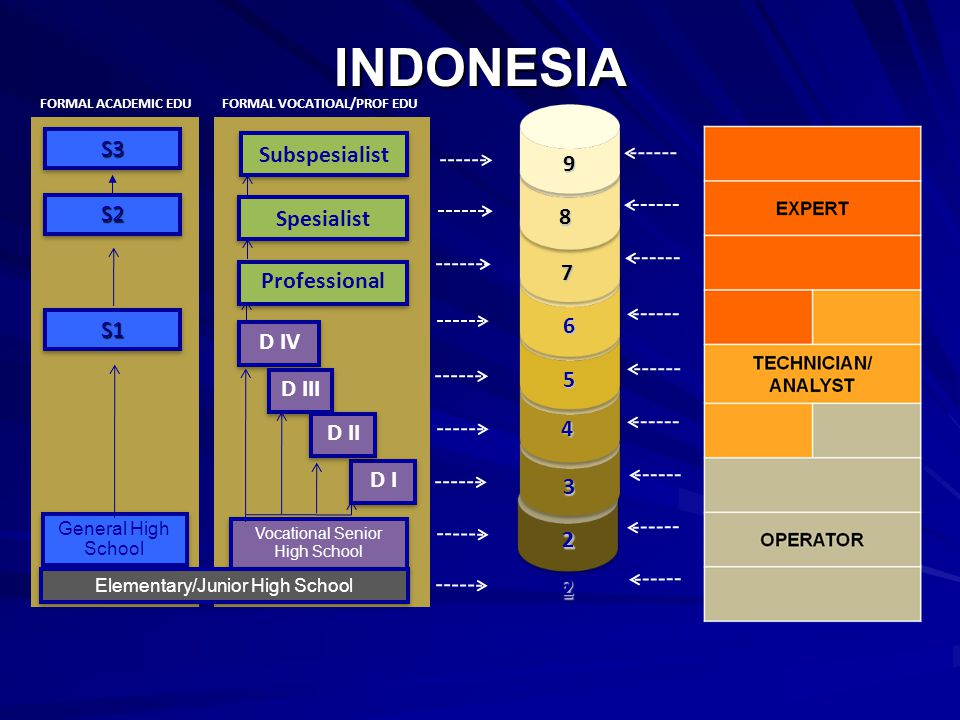INDONESIA S3 Subspesialist 9 S2 Spesialist 8 7 Professional S1 6 D IV