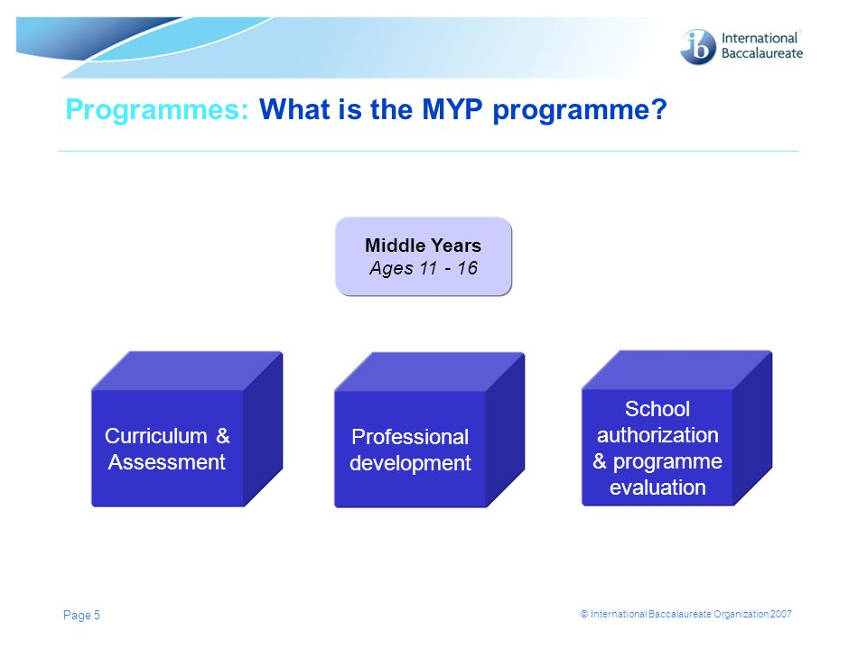 Programmes: What is the MYP programme