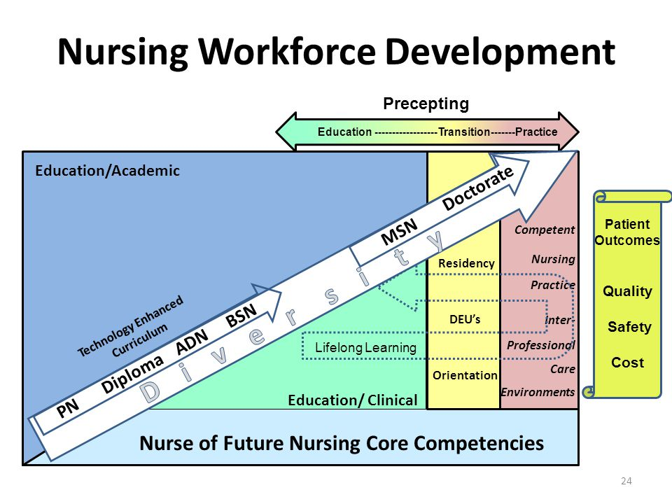 Nursing Workforce Development