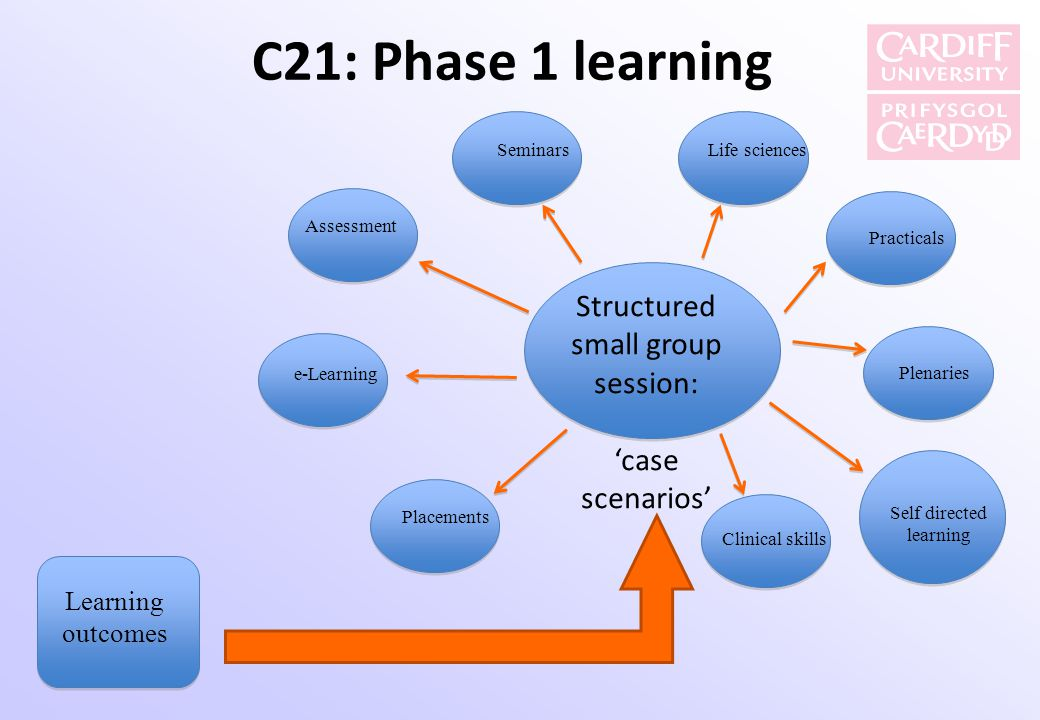 C21: Phase 1 learning Structured small group session: 'case scenarios'