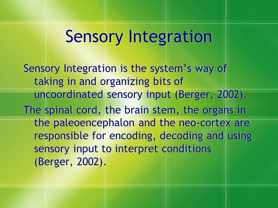 Sensory Integration Sensory Integration is the system's way of taking in and organizing bits of uncoordinated sensory input (Berger, 2002).