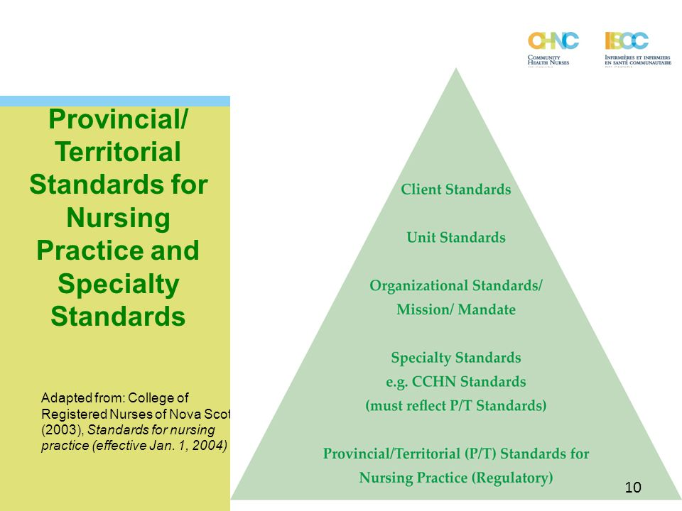 Provincial/ Territorial Standards for Nursing Practice and Specialty Standards