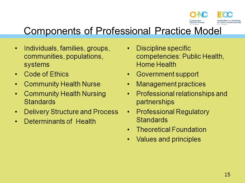Components of Professional Practice Model